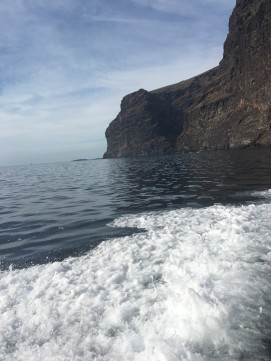 Whizzing past Los Gigantes
