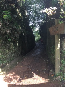 The start of the levada walk